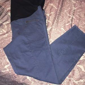 Brand New LOFT maternity pants